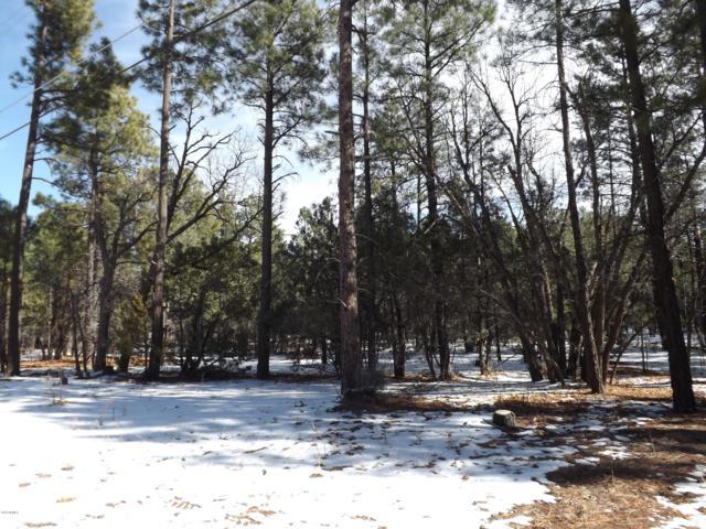 1501 N Woodland Rd. Road, Lakeside, AZ 85929 (MLS #5941993) :: Occasio Realty