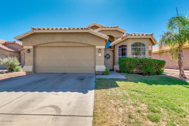 1232 S Pennington Drive, Chandler, AZ 85286 (MLS #5941997) :: Lucido Agency