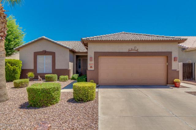 13703 W Tara Lane, Surprise, AZ 85374 (MLS #5941998) :: Lucido Agency