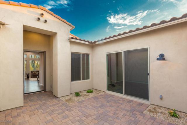 554XXX E Skinner Drive, Cave Creek, AZ 85331 (MLS #5942001) :: Lucido Agency