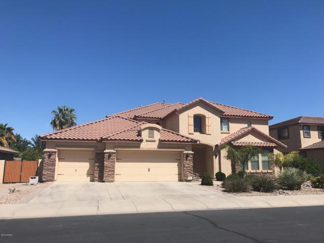 15334 W Elm Street, Goodyear, AZ 85395 (MLS #5942005) :: REMAX Professionals