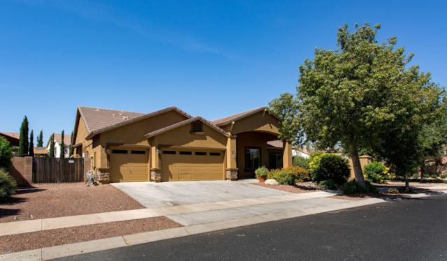 15861 W Mescal Street, Surprise, AZ 85379 (MLS #5942064) :: Team Wilson Real Estate