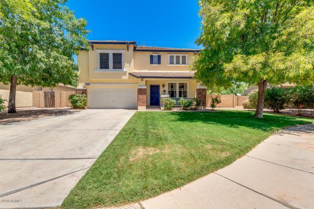 2488 E Ivanhoe Court, Gilbert, AZ 85295 (MLS #5942074) :: Team Wilson Real Estate