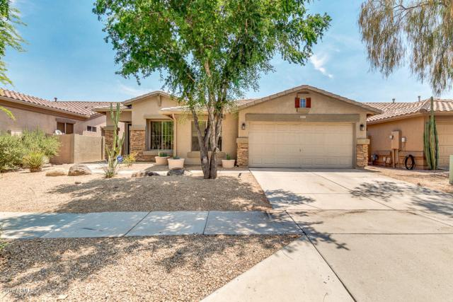 35405 N 34TH Avenue, Phoenix, AZ 85086 (MLS #5942096) :: Revelation Real Estate