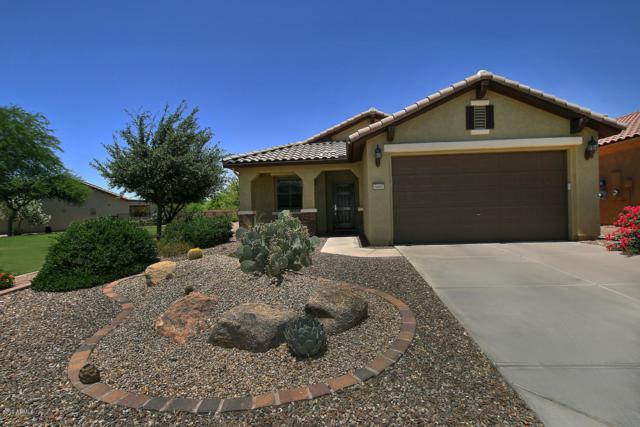 6682 W Patriot Way, Florence, AZ 85132 (MLS #5942101) :: CC & Co. Real Estate Team