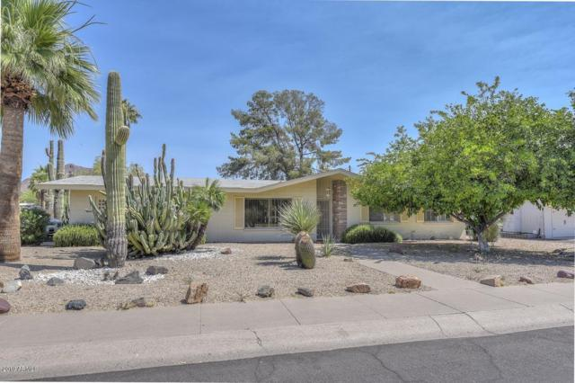 6114 E Monterey Way, Scottsdale, AZ 85251 (MLS #5942214) :: Devor Real Estate Associates