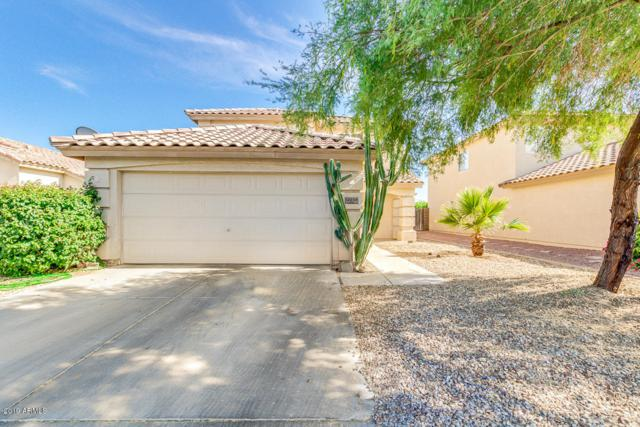 12233 W Larkspur Road, El Mirage, AZ 85335 (MLS #5942270) :: Openshaw Real Estate Group in partnership with The Jesse Herfel Real Estate Group