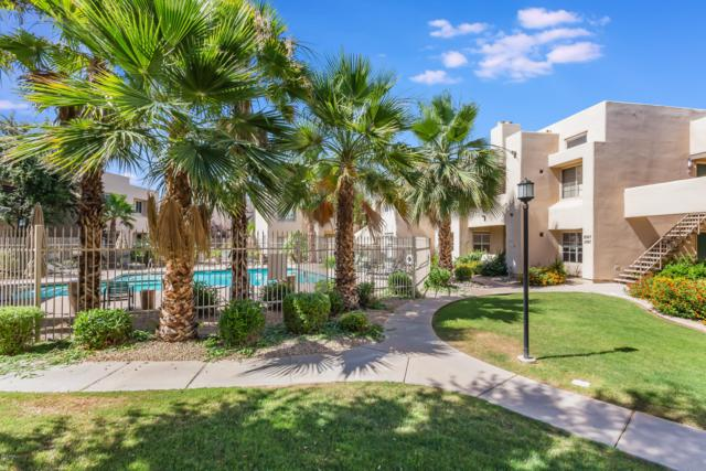 11333 N 92ND Street #1067, Scottsdale, AZ 85260 (MLS #5942313) :: Devor Real Estate Associates