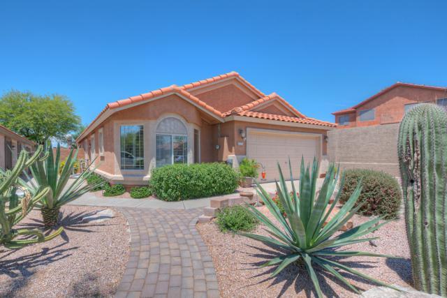 4538 E Juana Court, Cave Creek, AZ 85331 (MLS #5942325) :: The Property Partners at eXp Realty