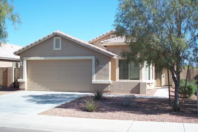 25014 W Hidalgo Drive, Buckeye, AZ 85326 (MLS #5942331) :: Riddle Realty