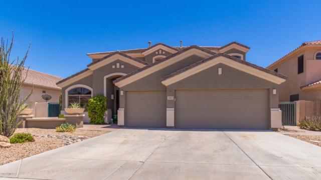 13625 W Holly Street, Goodyear, AZ 85395 (MLS #5942342) :: REMAX Professionals