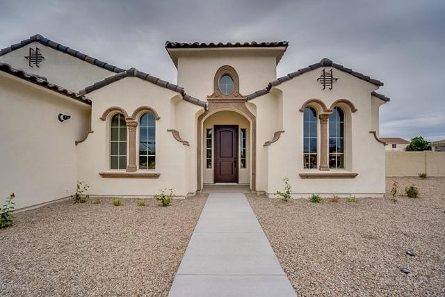9205 S 47TH Avenue, Laveen, AZ 85339 (MLS #5942353) :: Openshaw Real Estate Group in partnership with The Jesse Herfel Real Estate Group