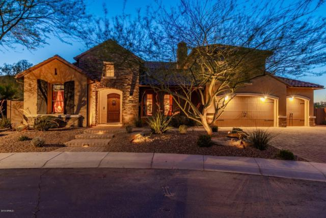 6768 W Lucia Drive, Peoria, AZ 85383 (MLS #5942379) :: The Laughton Team