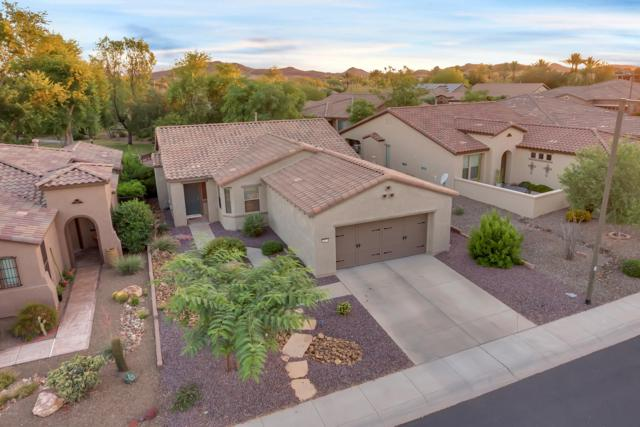 28574 N 123RD Lane, Peoria, AZ 85383 (MLS #5942380) :: Lucido Agency
