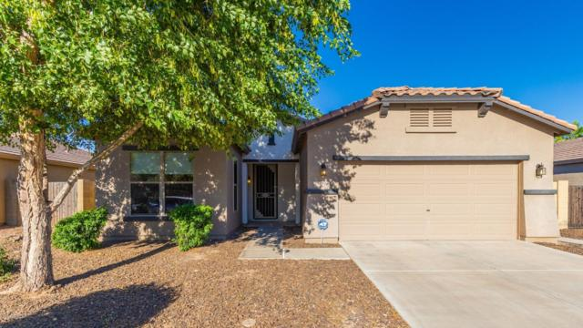 1501 S 115TH Drive, Avondale, AZ 85323 (MLS #5942384) :: The Kenny Klaus Team