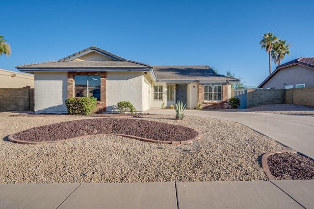 3843 E Shomi Street, Phoenix, AZ 85044 (MLS #5942418) :: Relevate | Phoenix