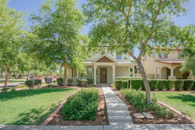 21010 W Hamilton Street, Buckeye, AZ 85396 (MLS #5942430) :: The W Group