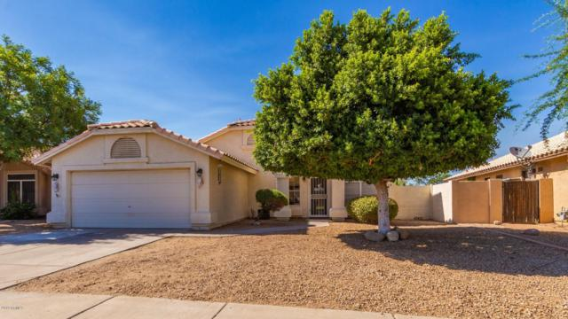 12402 W Edgemont Avenue, Avondale, AZ 85392 (MLS #5942442) :: CC & Co. Real Estate Team