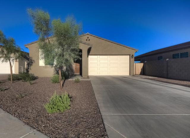 1961 N 214TH Drive, Buckeye, AZ 85396 (MLS #5942443) :: Conway Real Estate