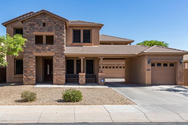 15310 W Roma Avenue, Goodyear, AZ 85395 (MLS #5942467) :: REMAX Professionals