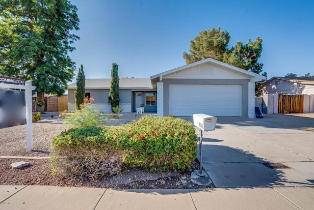 822 W Kerry Lane, Phoenix, AZ 85027 (MLS #5942477) :: Openshaw Real Estate Group in partnership with The Jesse Herfel Real Estate Group