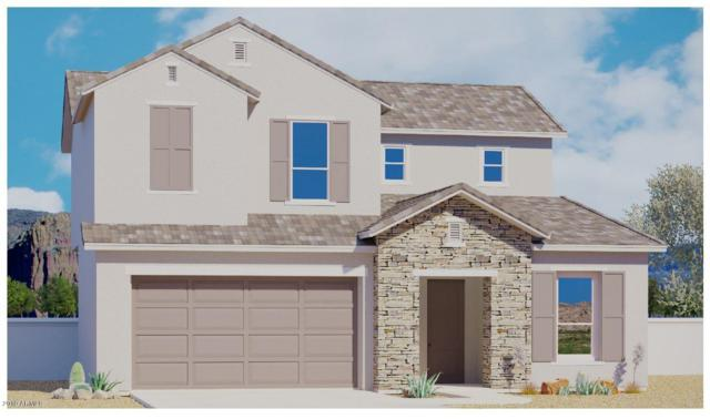 6614 E Rose Marie Lane, Phoenix, AZ 85054 (MLS #5942527) :: The Property Partners at eXp Realty