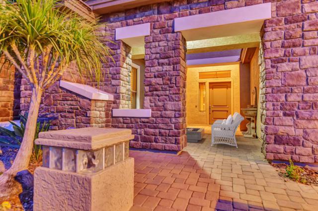 961 W Macaw Drive, Chandler, AZ 85286 (MLS #5942535) :: The Daniel Montez Real Estate Group