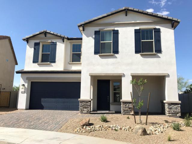 6610 E Rose Marie Lane, Phoenix, AZ 85054 (MLS #5942538) :: The Property Partners at eXp Realty