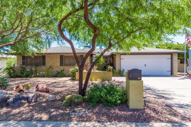 2935 W Cactus Wren Drive, Phoenix, AZ 85051 (MLS #5942549) :: Riddle Realty