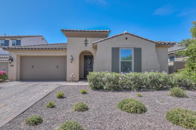 20499 W Stone Hill Road, Buckeye, AZ 85396 (MLS #5942551) :: Yost Realty Group at RE/MAX Casa Grande