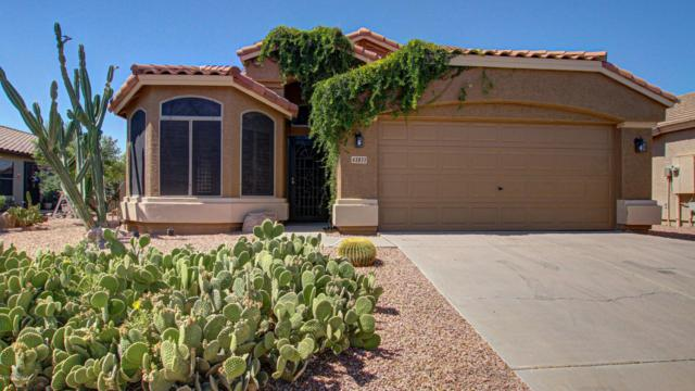 43833 W Wade Drive, Maricopa, AZ 85138 (MLS #5942566) :: Revelation Real Estate