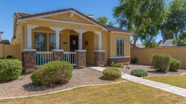 3453 E Kent Avenue, Gilbert, AZ 85296 (MLS #5942574) :: The Pete Dijkstra Team