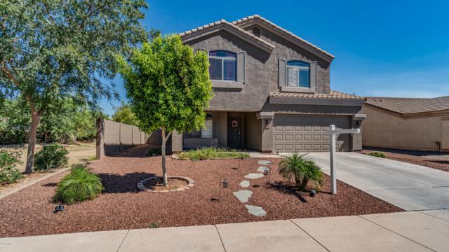15992 W Hammond Street, Goodyear, AZ 85338 (MLS #5942582) :: CC & Co. Real Estate Team