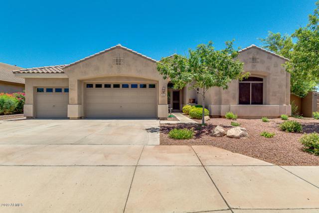 4901 N 127th Drive, Litchfield Park, AZ 85340 (MLS #5942588) :: CC & Co. Real Estate Team
