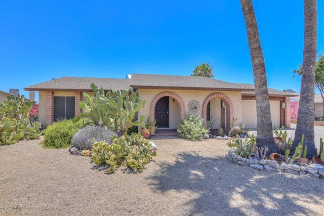5141 W Larkspur Drive, Glendale, AZ 85304 (MLS #5942639) :: REMAX Professionals