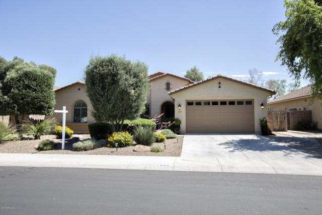2465 E Donato Drive, Gilbert, AZ 85298 (MLS #5942643) :: Openshaw Real Estate Group in partnership with The Jesse Herfel Real Estate Group