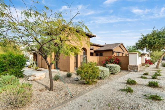 18161 W Gold Poppy Way, Goodyear, AZ 85338 (MLS #5942678) :: Homehelper Consultants