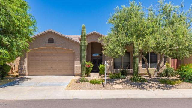 7348 E Fledgling Drive, Scottsdale, AZ 85255 (MLS #5942705) :: Kepple Real Estate Group