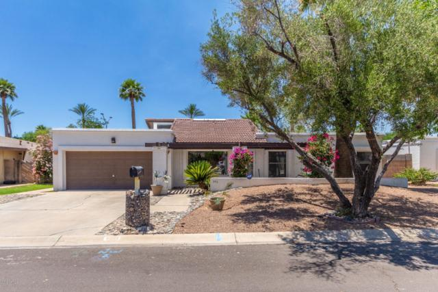 346 Ancora Drive W, Litchfield Park, AZ 85340 (MLS #5942749) :: Openshaw Real Estate Group in partnership with The Jesse Herfel Real Estate Group