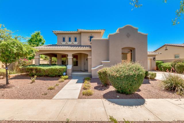 20475 W Daniel Place, Buckeye, AZ 85396 (MLS #5942752) :: Riddle Realty