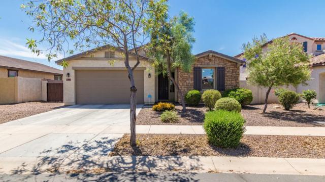 7006 S 19TH Lane S, Phoenix, AZ 85041 (MLS #5942756) :: CC & Co. Real Estate Team