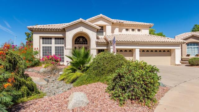 14428 S 13TH Place, Phoenix, AZ 85048 (MLS #5942803) :: Power Realty Group Model Home Center