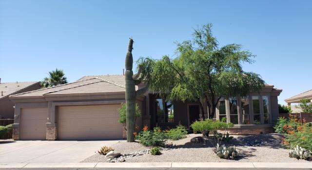 9507 E Nora Circle, Mesa, AZ 85207 (MLS #5942811) :: Riddle Realty