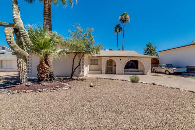 224 E Minton Drive, Tempe, AZ 85282 (MLS #5942813) :: The Property Partners at eXp Realty