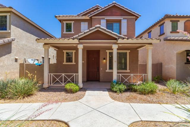 627 S Buena Vista Avenue, Gilbert, AZ 85296 (MLS #5942869) :: Openshaw Real Estate Group in partnership with The Jesse Herfel Real Estate Group