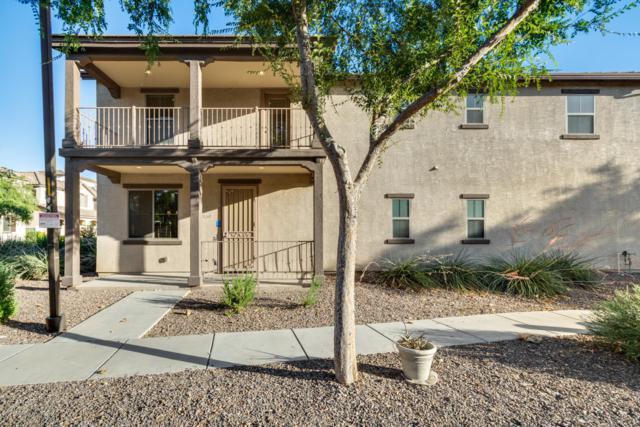 1689 E Elgin Street, Gilbert, AZ 85295 (MLS #5942899) :: Yost Realty Group at RE/MAX Casa Grande