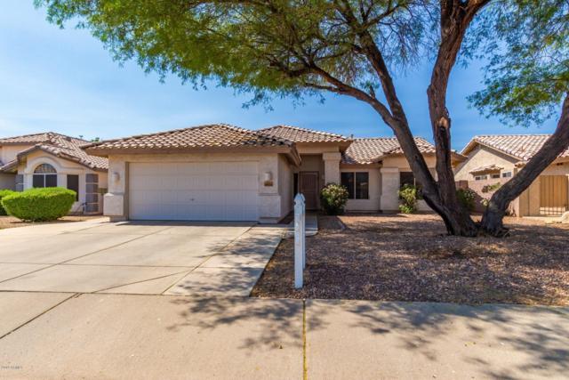 8924 W Paradise Lane, Peoria, AZ 85382 (MLS #5942913) :: REMAX Professionals