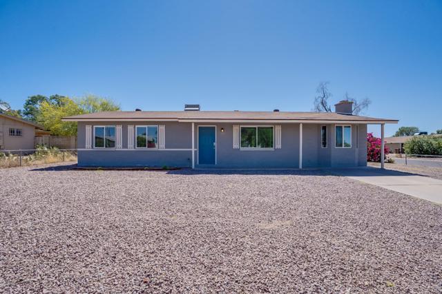 701 N 95TH Circle, Mesa, AZ 85207 (MLS #5942914) :: Riddle Realty
