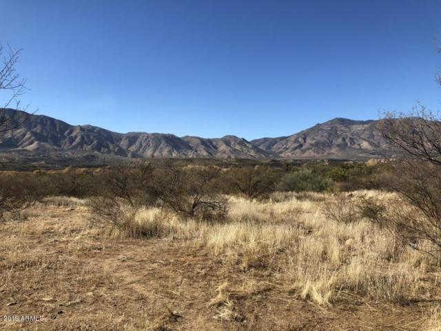 Lot 4Y Rodeo Drive, Tonto Basin, AZ 85553 (MLS #5942935) :: The Everest Team at eXp Realty