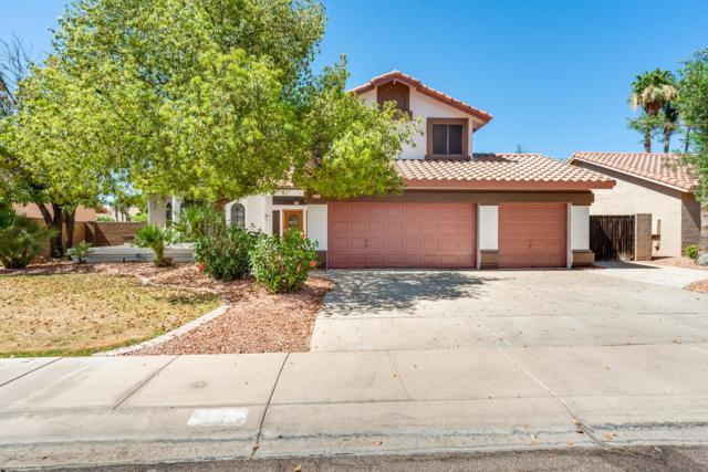 2318 E Egret Court, Gilbert, AZ 85234 (MLS #5942938) :: Relevate | Phoenix
